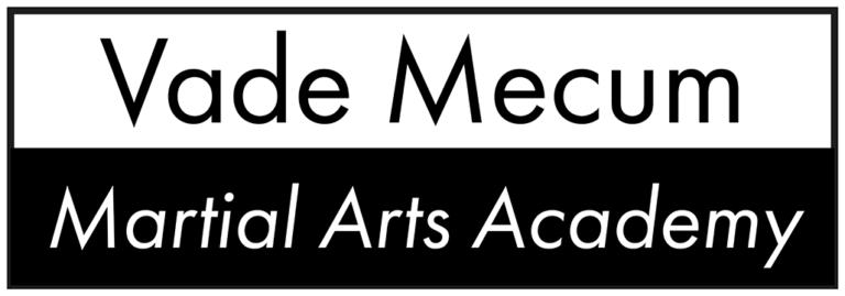 Kung Fu für zuhause / Online Kung Fu Unterricht / Logo