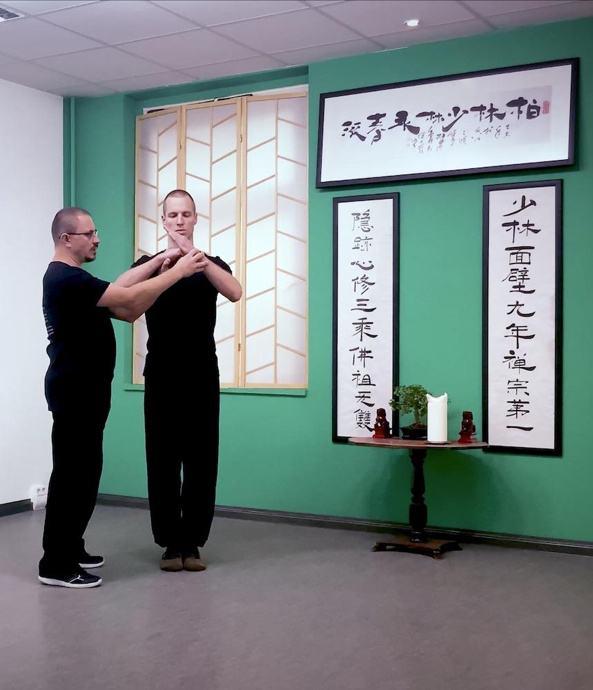 Kung Fu für zuhause / Online Kung Fu Unterricht 9